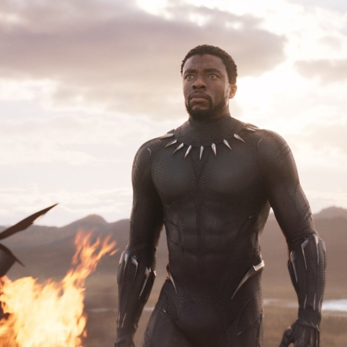 Black Panther is already the highest rated Marvel movie on Rotten ...