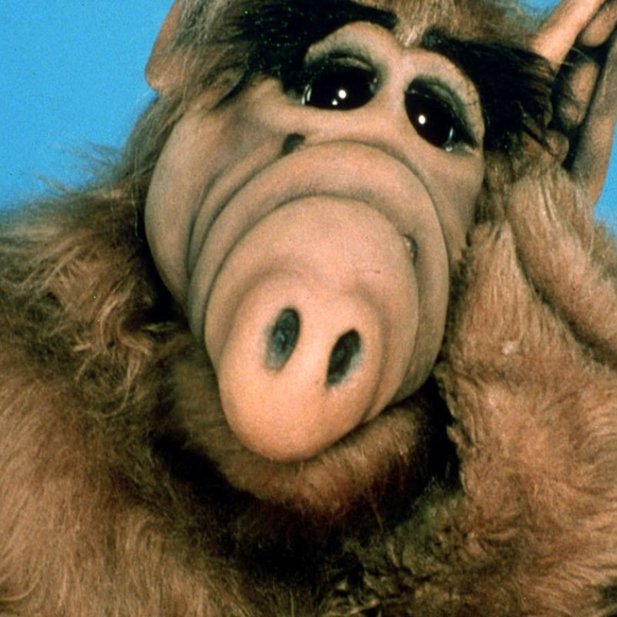 There's Reportedly an ALF Reboot in Development