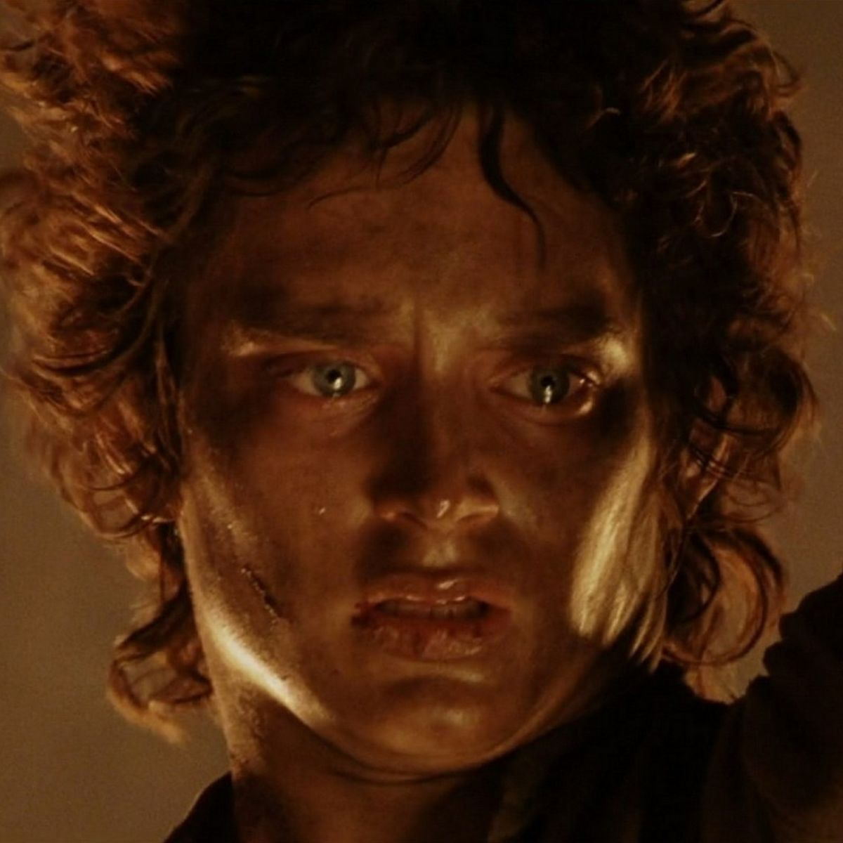Frodo and the Ring