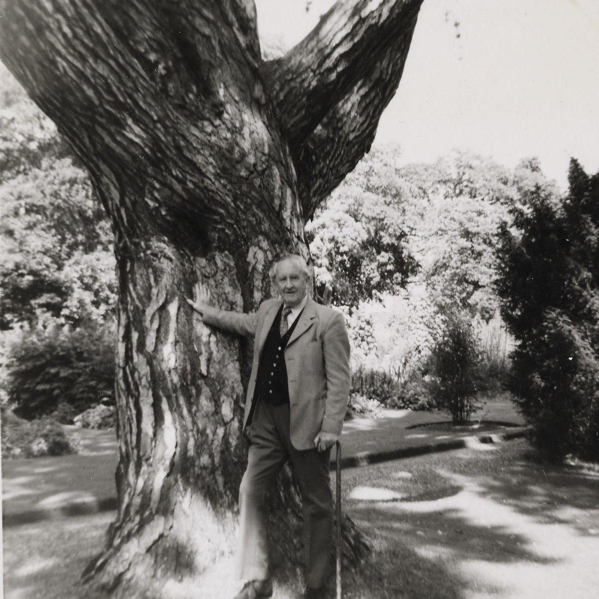 Tolkien portrait