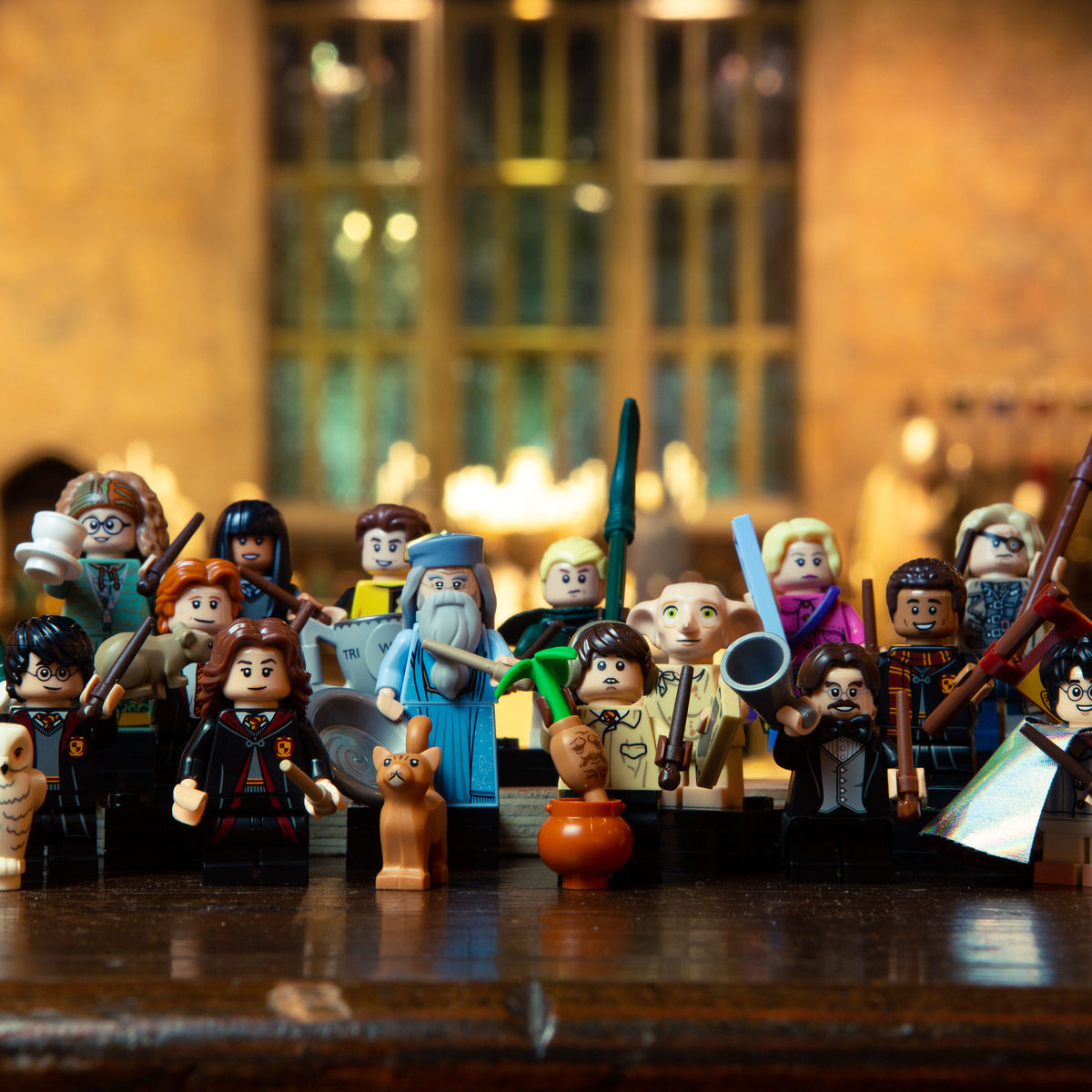 HeroLEGOWizardingWorld5