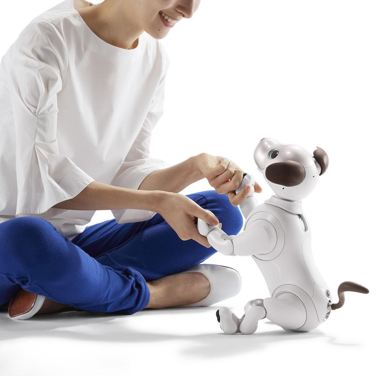 Sony aibo robot dog