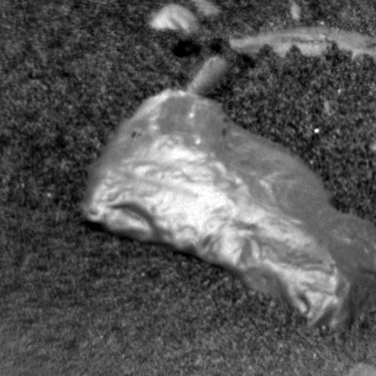 shiny rock found on Mars by Curiosity