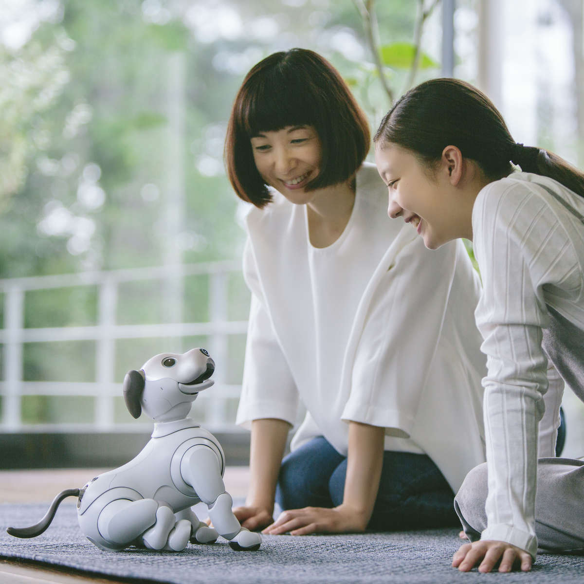 Sony to launch robot dog Aibo in United States in September