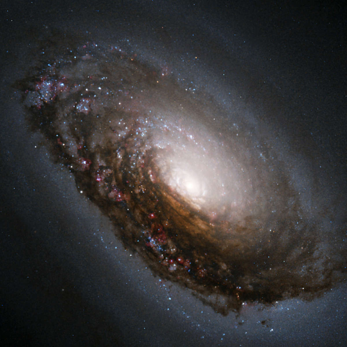 M64, the Black Eye galaxy. Credit: NASA/ESA and The Hubble Heritage Team (AURA/STScI)