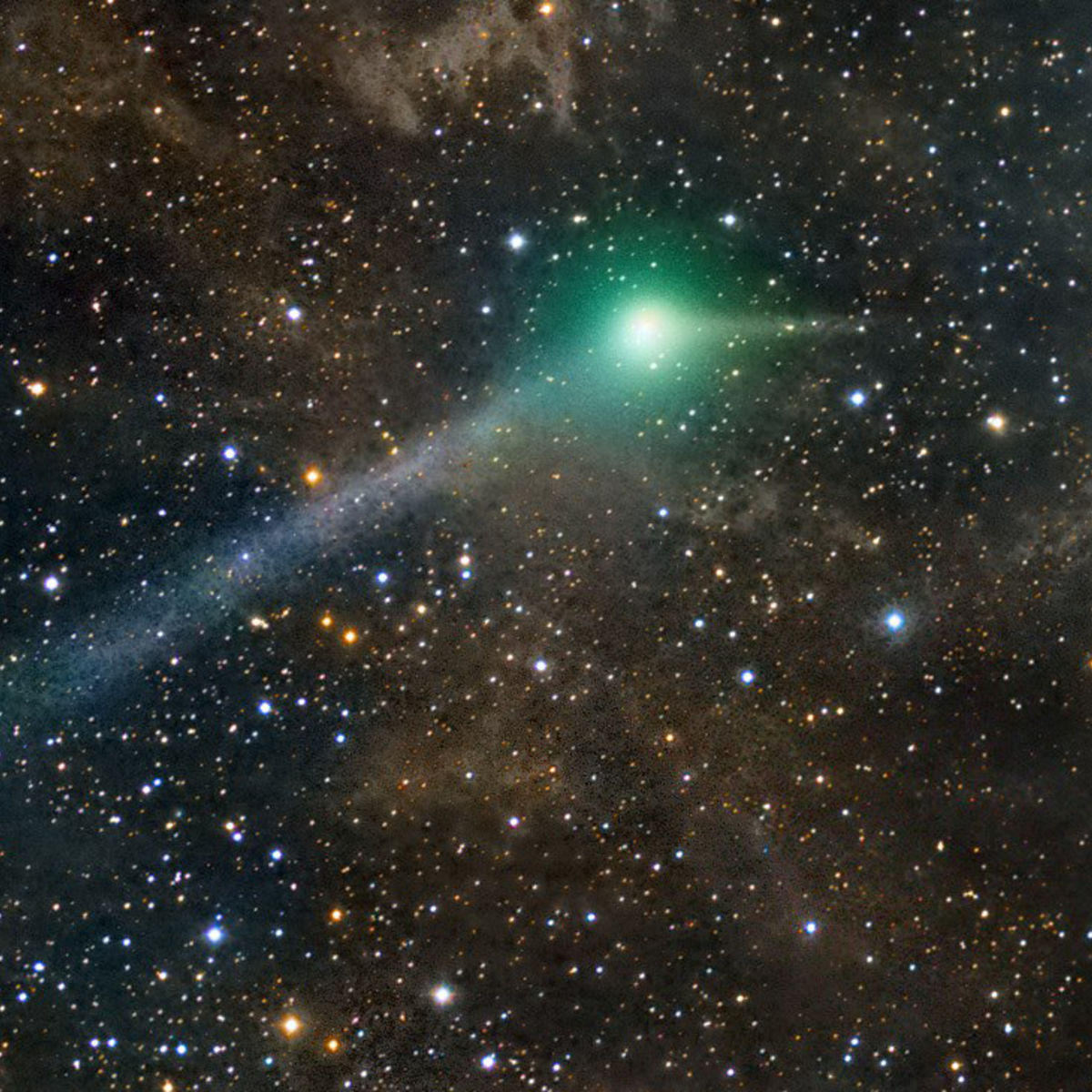 Comet C/2014 Q2 Lovejoy near the north celestial pole on May 29, 2015, with Polaris glowing nearby. Credit: Rogelio Bernal Andreo
