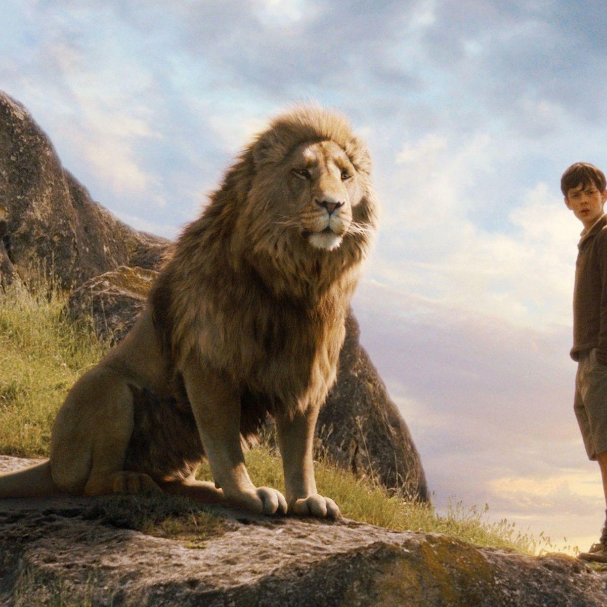 Chronciles of Narnia Edmund and Aslan