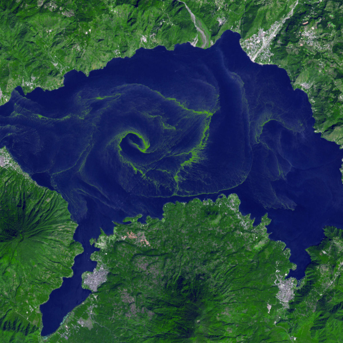 A cyanobacteria bloom in Guatemala's Lake Atitlán created a vast dead zone in the otherwise fecund lake, showing that billions of years later these bacteria can still cause grief.