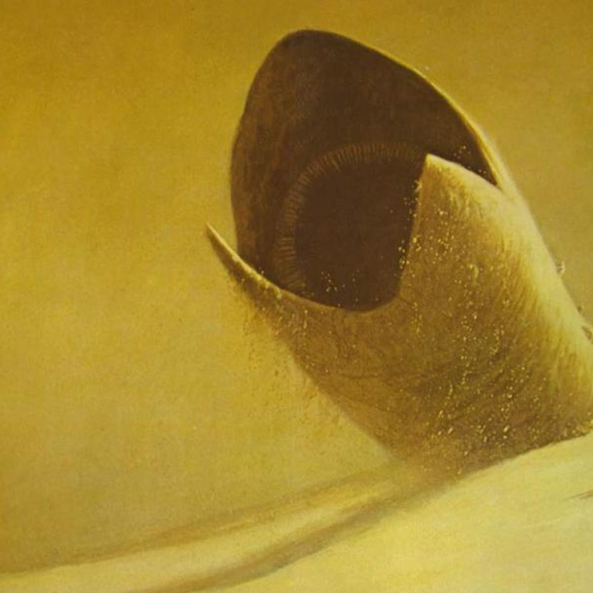 DuneWorm.jpg