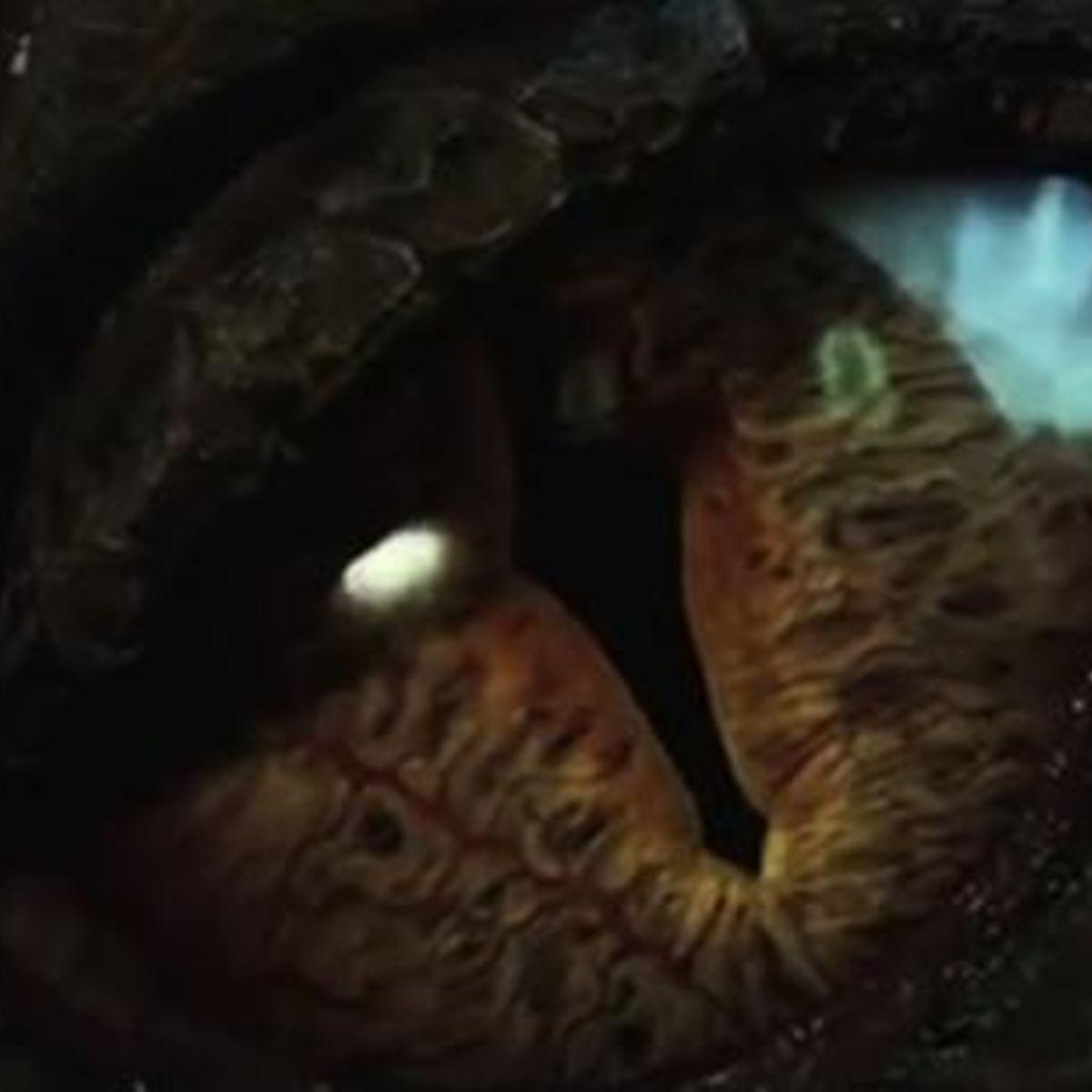 EyeofSmaug_Hobbit.jpg
