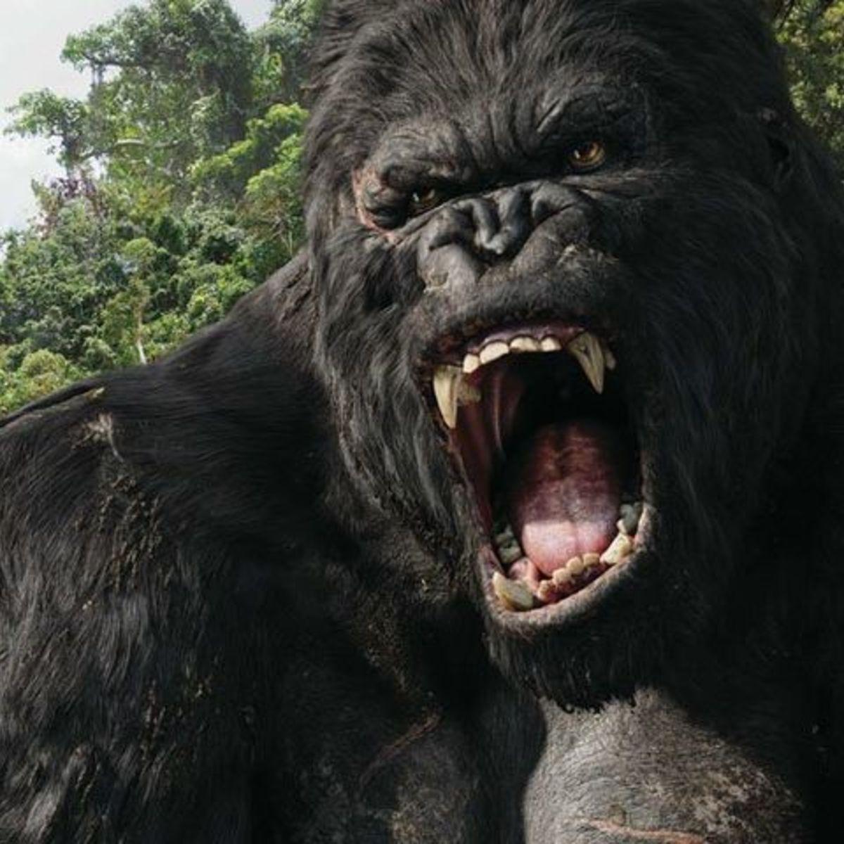 King-Kong-movie_0.jpg
