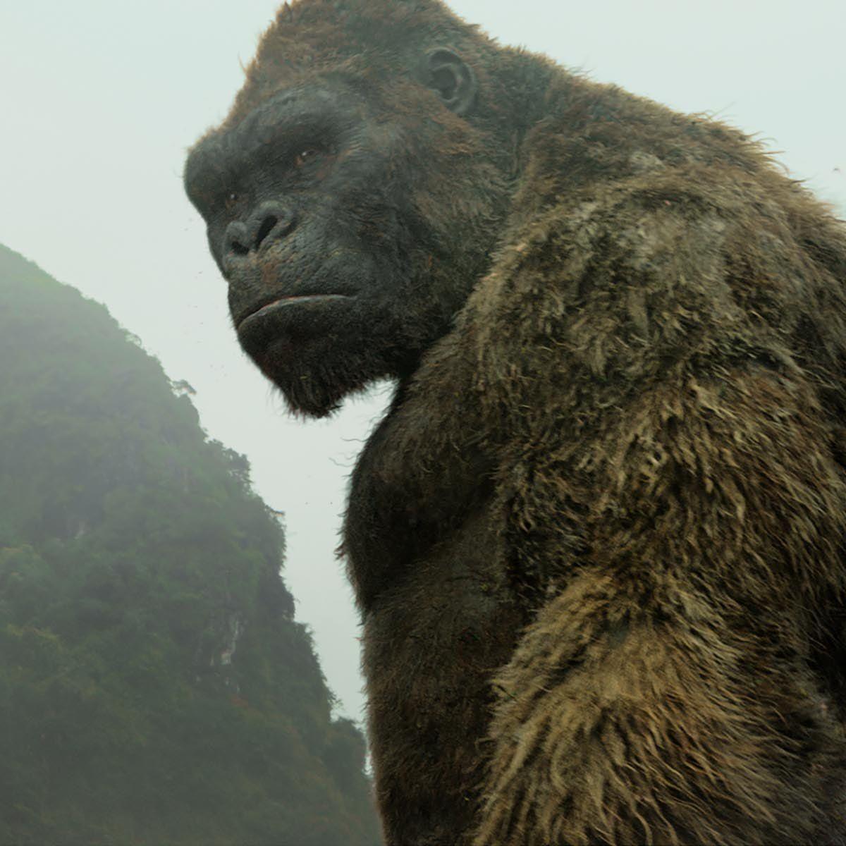 Kong-Skull-Island-Kong.jpg
