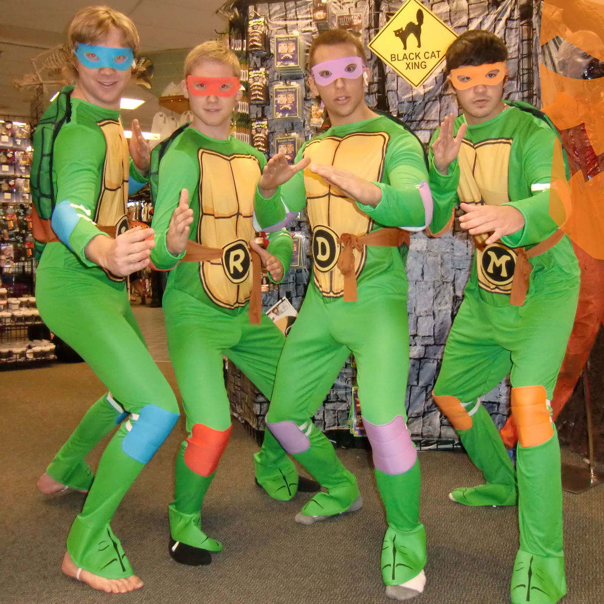 Lethbridge-turtles.jpg