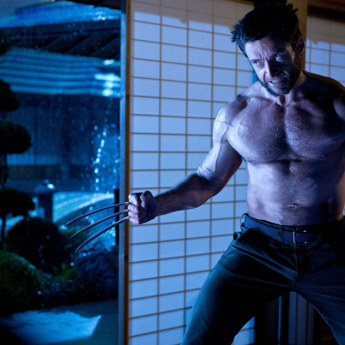 The-Wolverine-High-Res-Photo.jpg