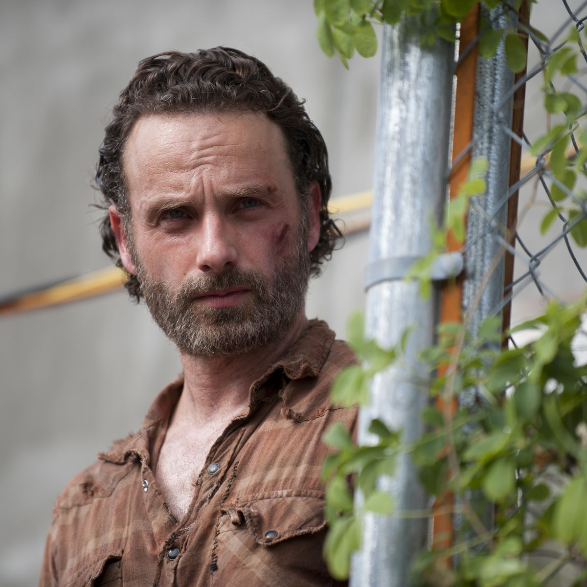 The Walking Dead's Andrew Lincoln