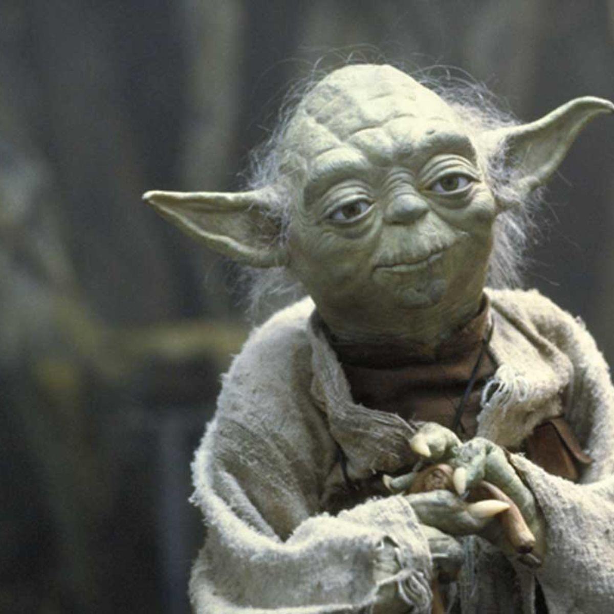 Yodapuppet.jpeg