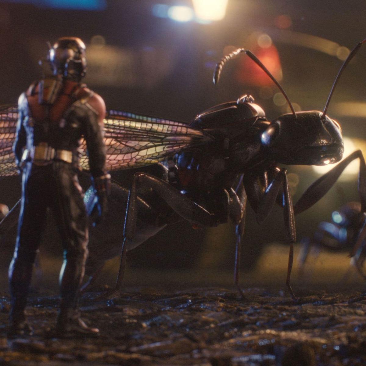 antman_ants.jpg