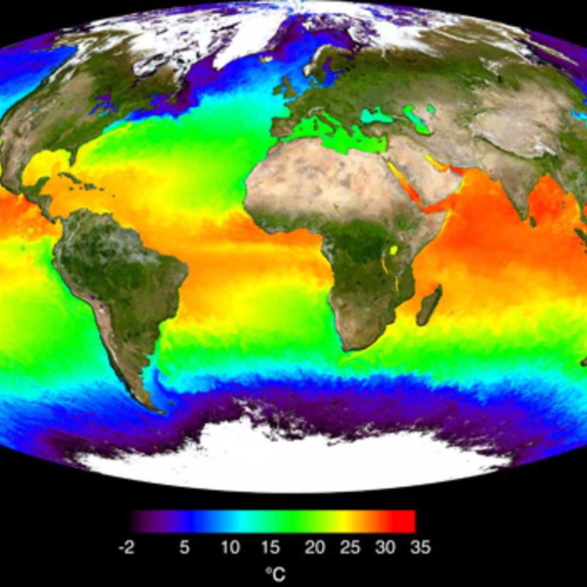 global_seasurfacetemp_map_0.jpg