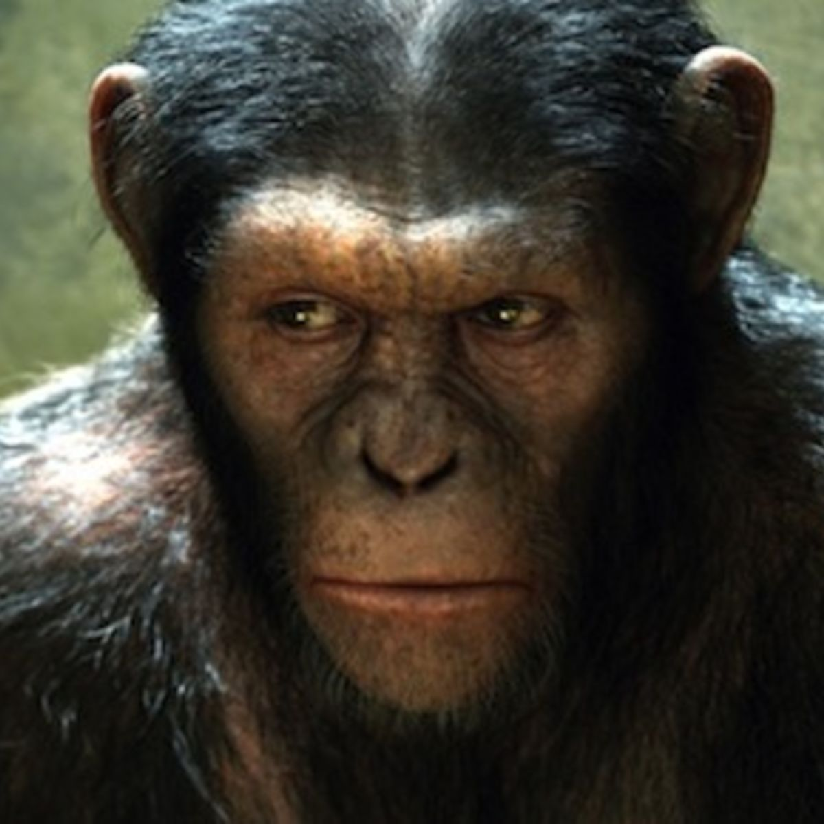 Ceasar-Rise-of-the-Planet-of-the-Apes_0.jpg