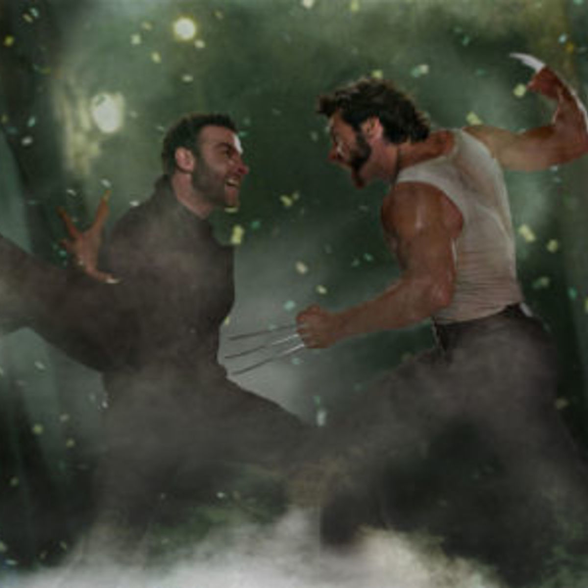 Wolverine_fight.jpg