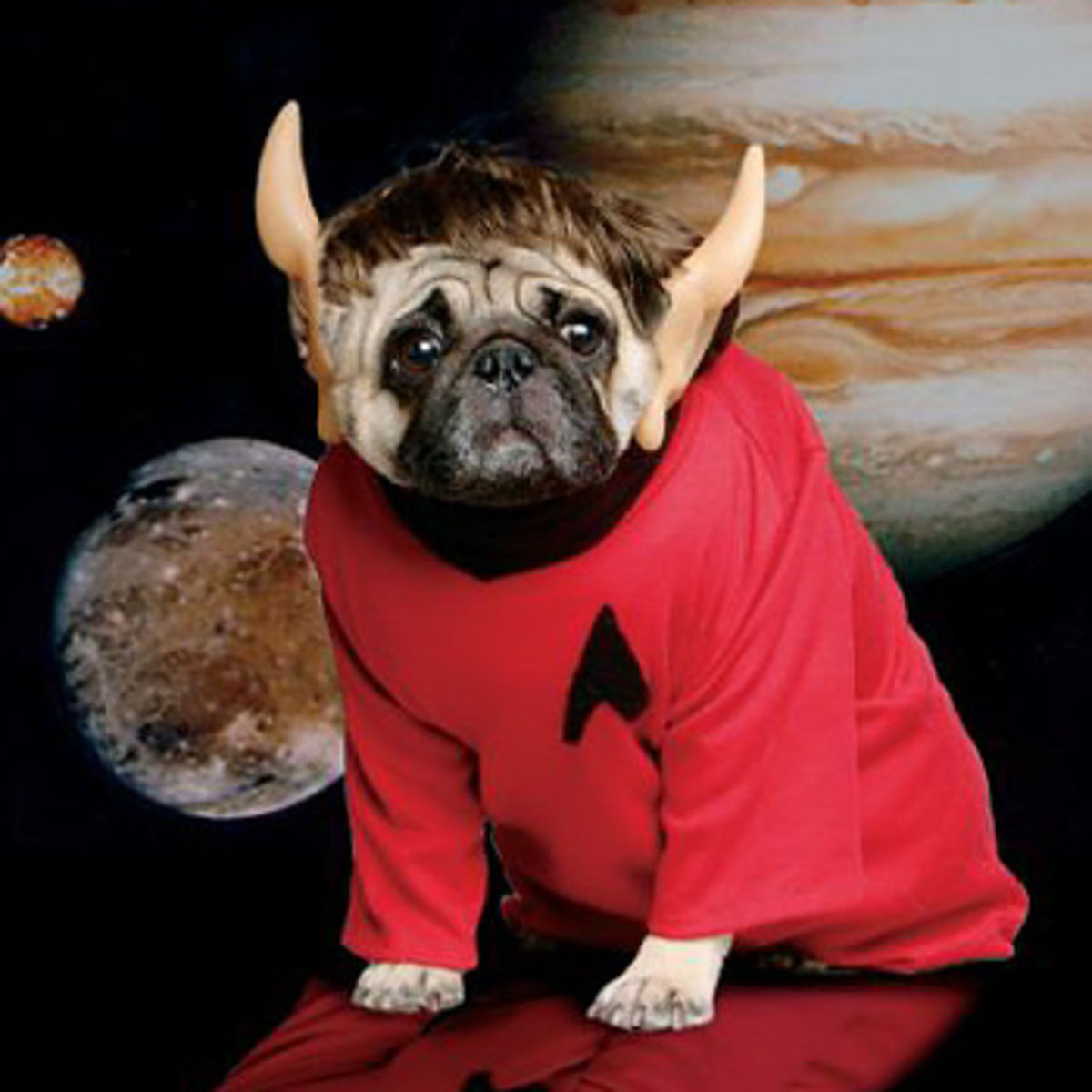 20 great costumes to dress up your pet & 20 great costumes to dress up your pet   SYFY WIRE