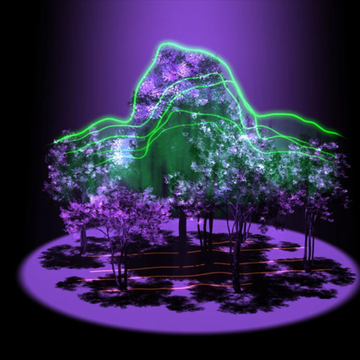 lidar_3d_trees.jpg