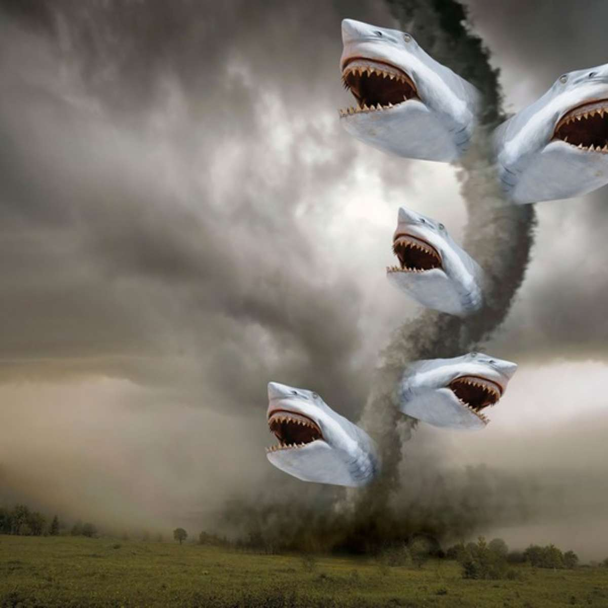 sharknado-attack.jpg