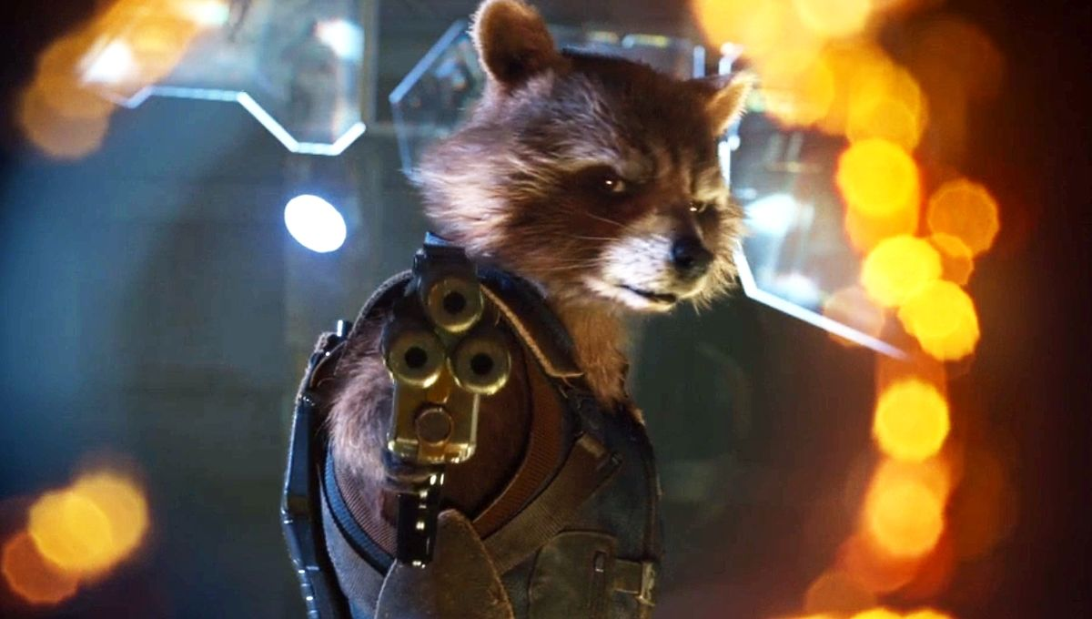 Syfy Rocket Raccoon Could Have Come From Somewhere A