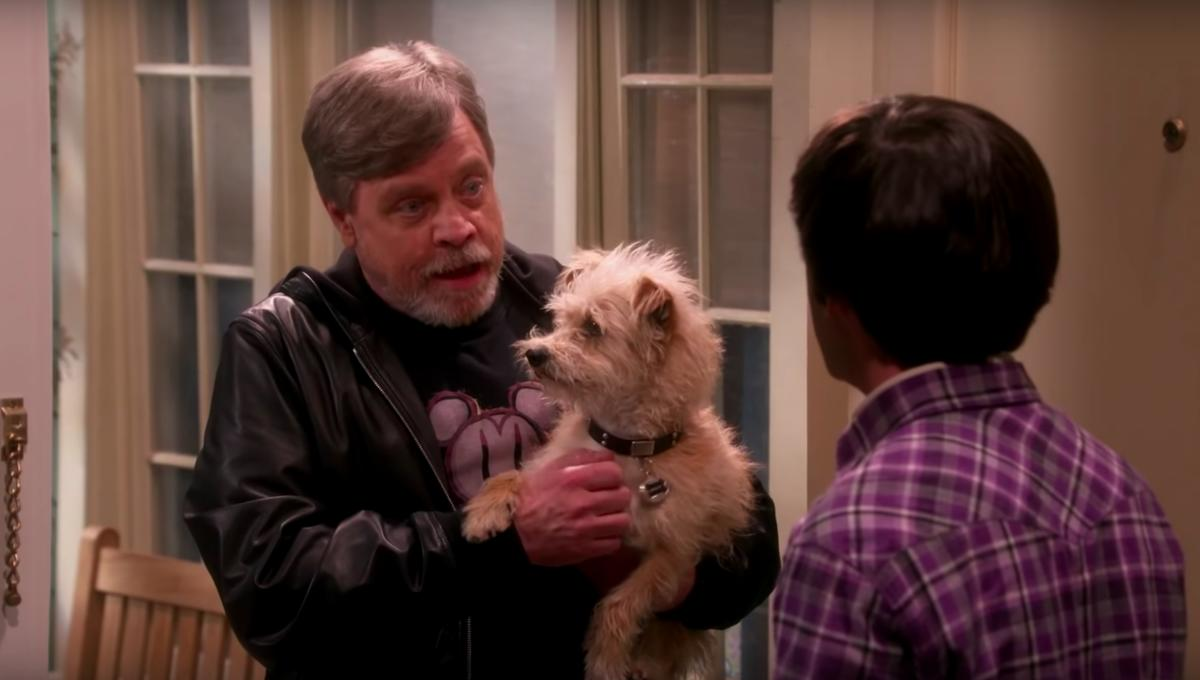 Mark Hamill: Cast of The Big Bang Theory geek out over their