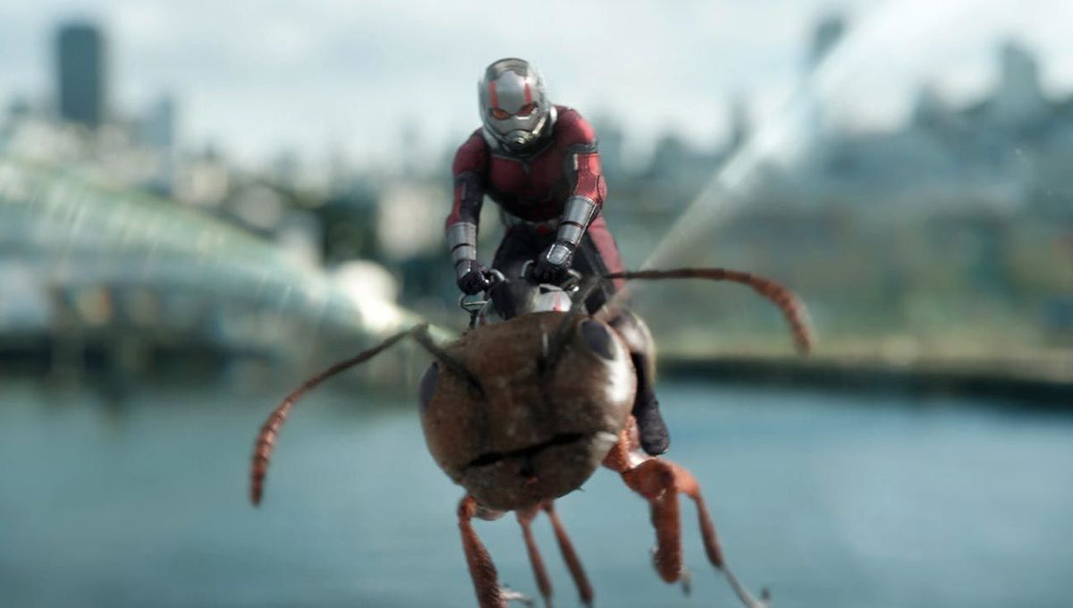 Ant-Man and the Wasp Scott and friend hero
