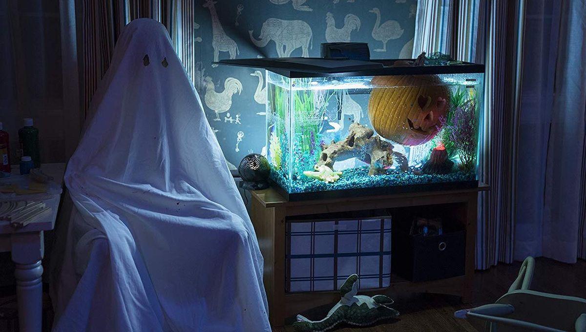 Halloween 2018 aquarium hero