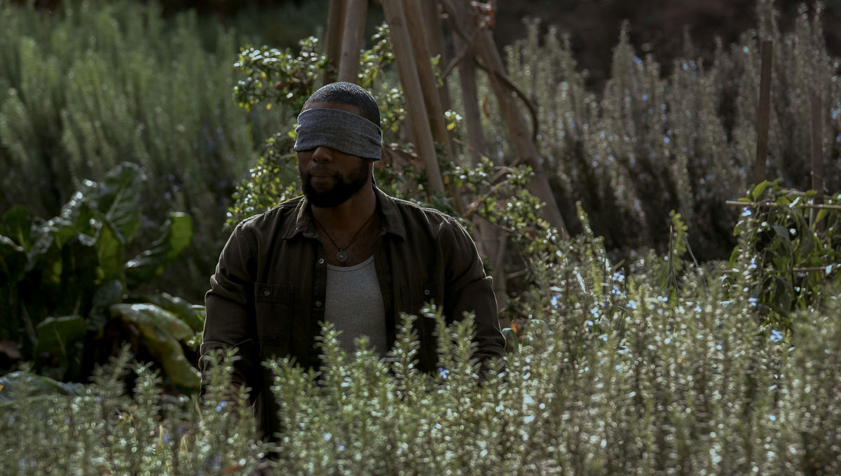 Netflix S Bird Box Star Trevante Rhodes Had To Figure Out How To Act
