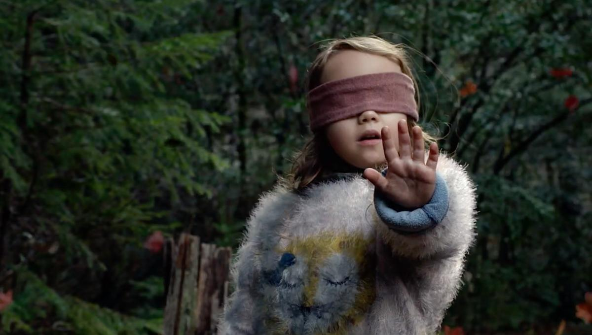 Netflix Warns Against Viral Challenge As Bird Box Fans Don
