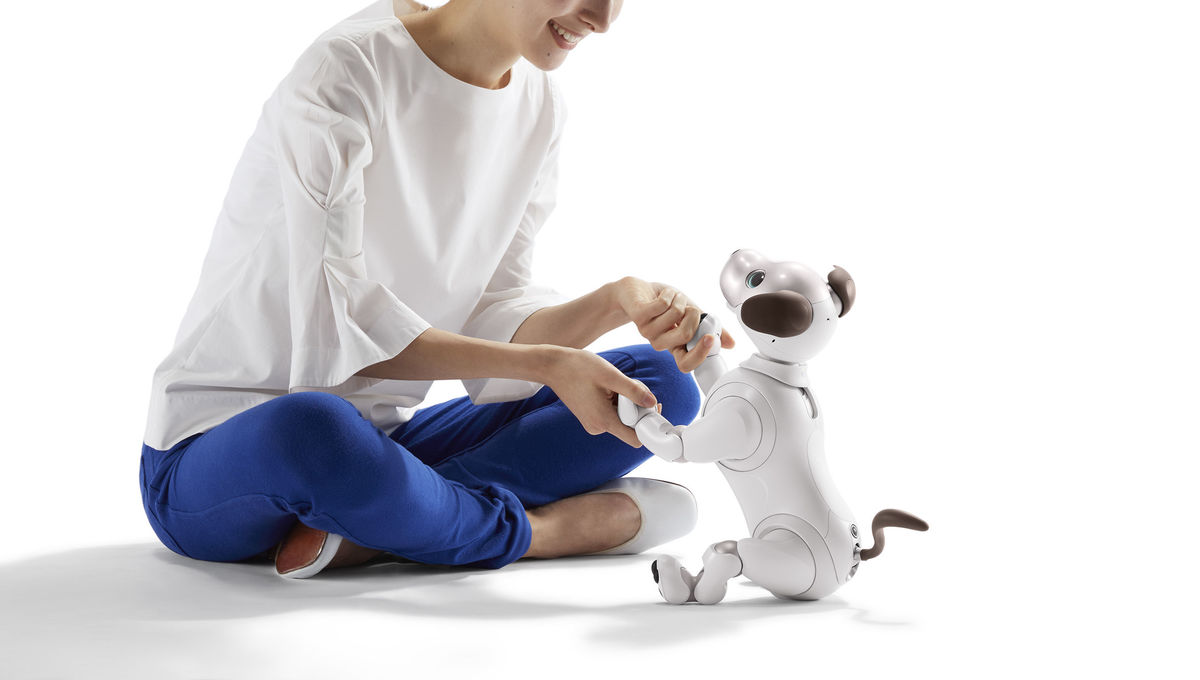 Give a robot dog for Christmas: Meet Sony's aibo, your new