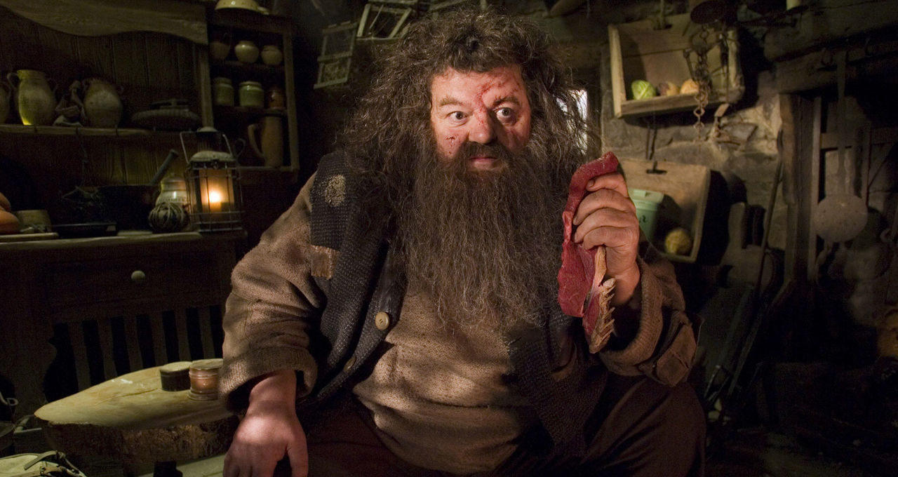 Happy Birthday Hagrid Here Are 8 Moments That Make Us Love The