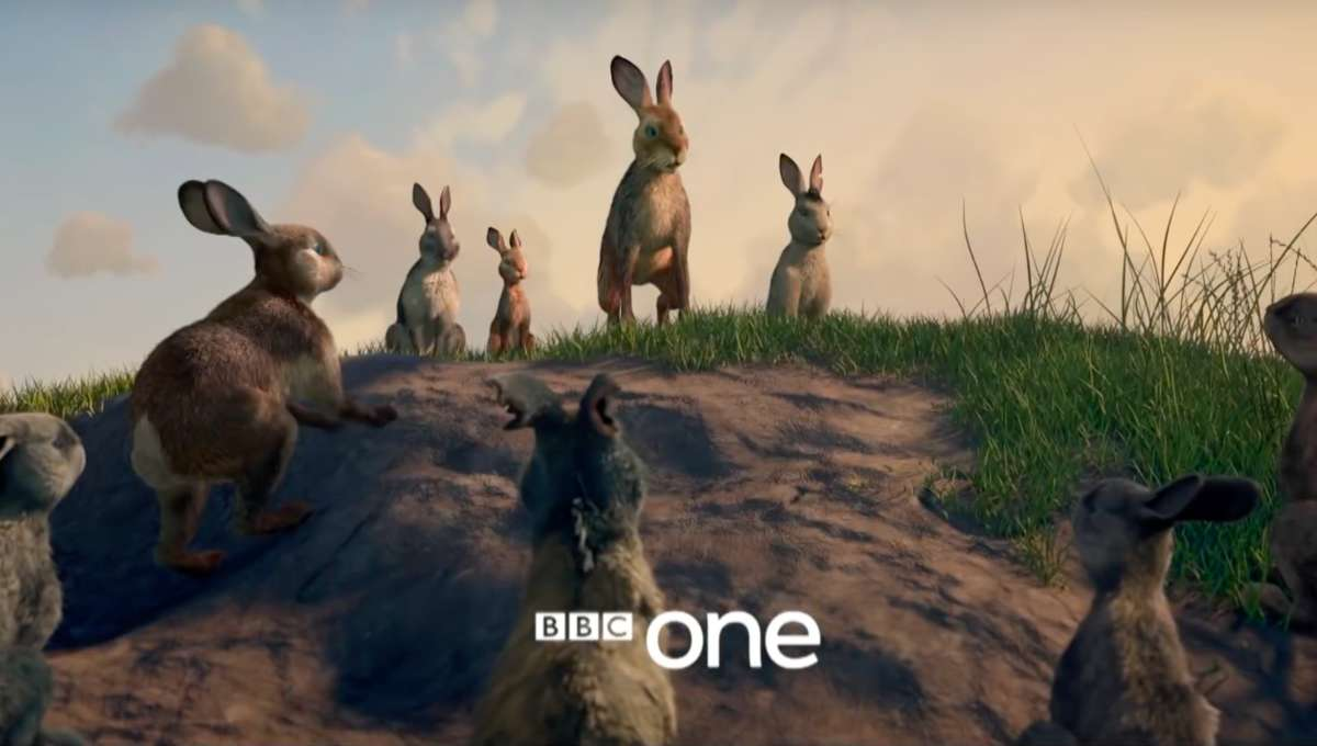 Watership Down: Talking rabbits battle tyranny in first trailer for BBC One remake