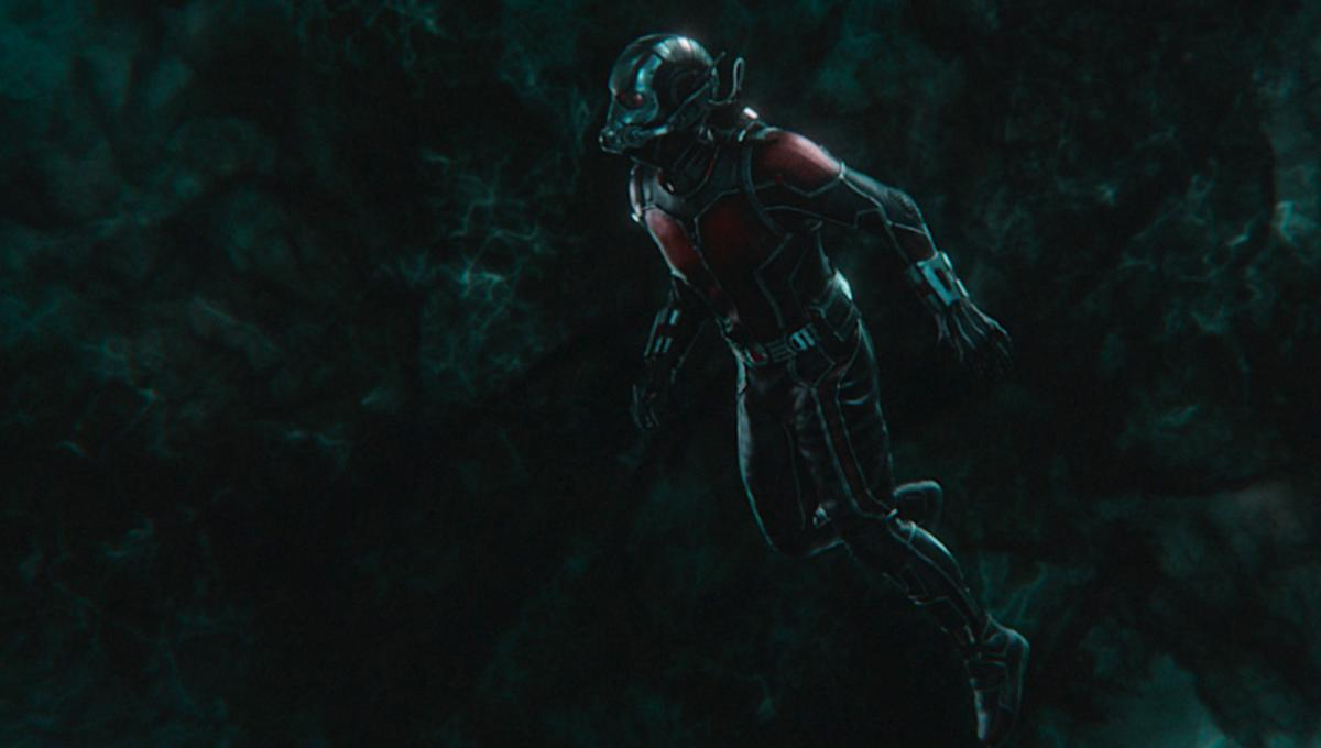 Ant Man Wasp via official Marvel website 2019