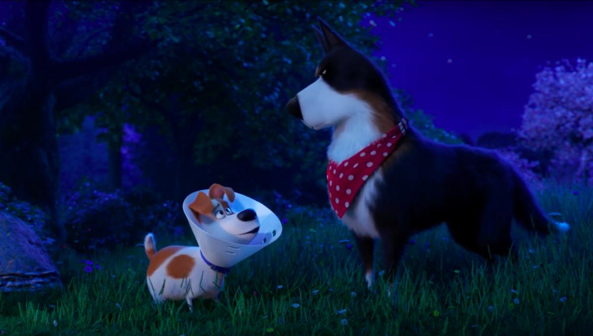 The Secret Life Of Pets 2 - The Rooster Trailer