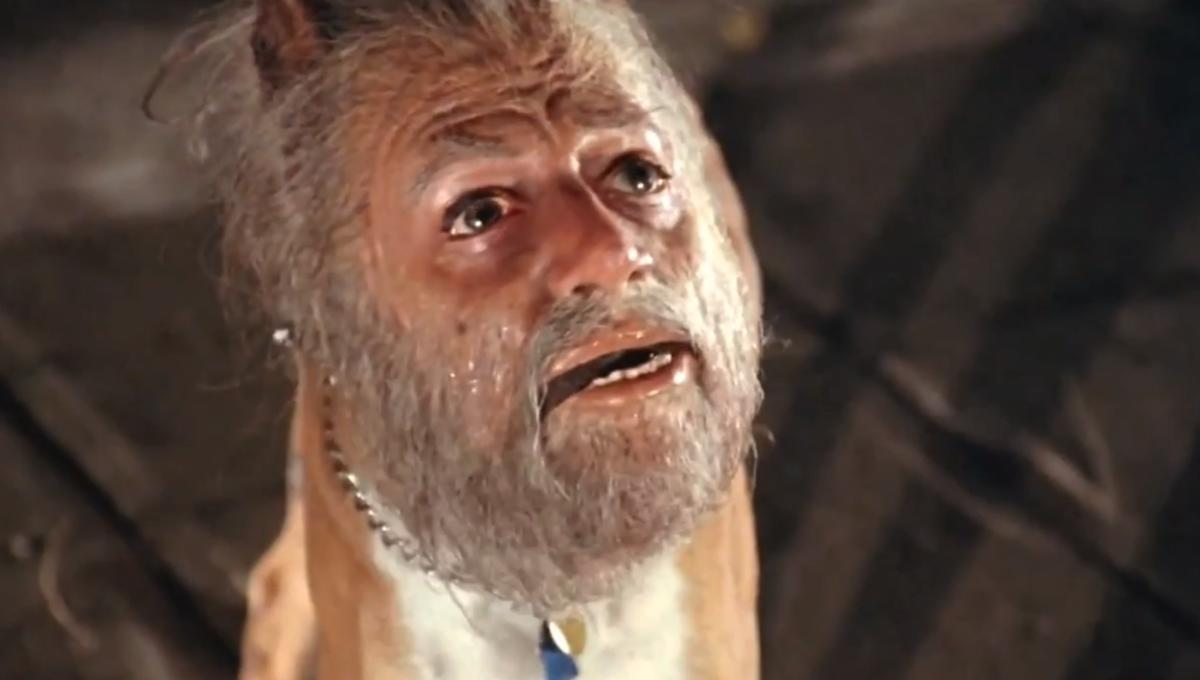 Wtf Moments The Human Faced Dog In Invasion Of The Body