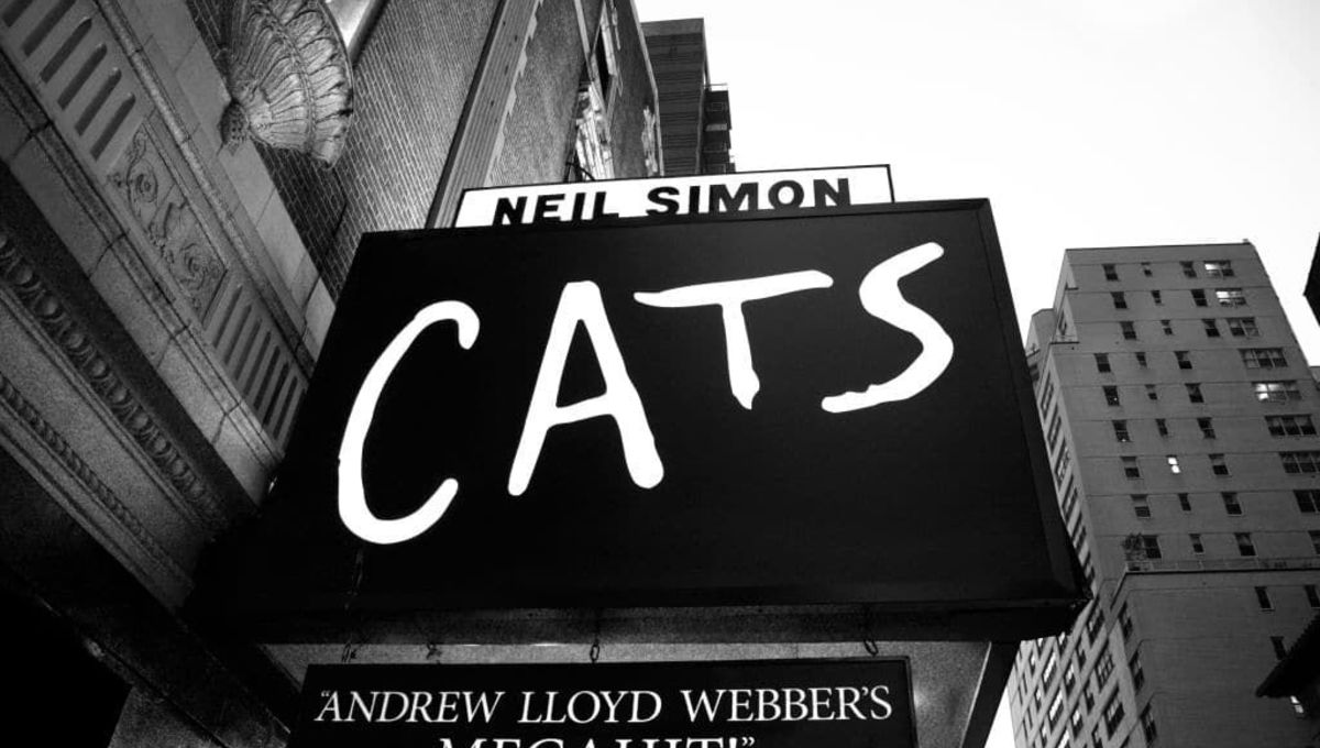 Trying to explain Andrew Lloyd Webber's Cats
