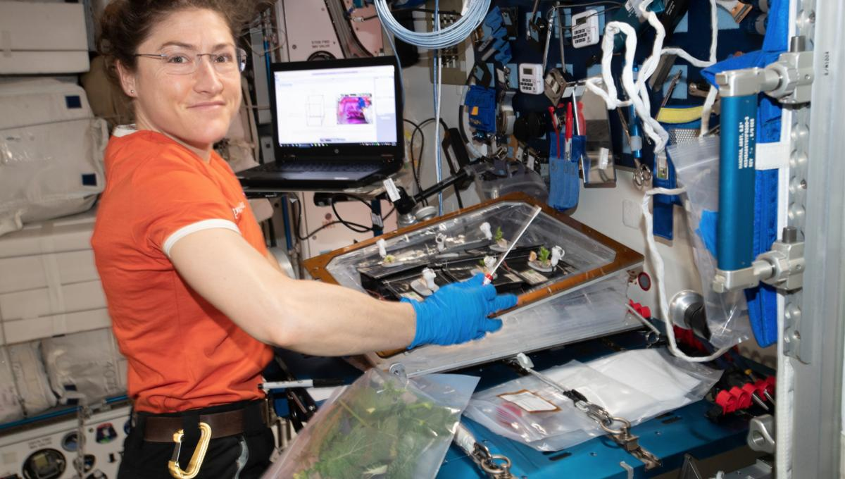Astronaut Christina Koch to set record for longest spaceflight by a woman