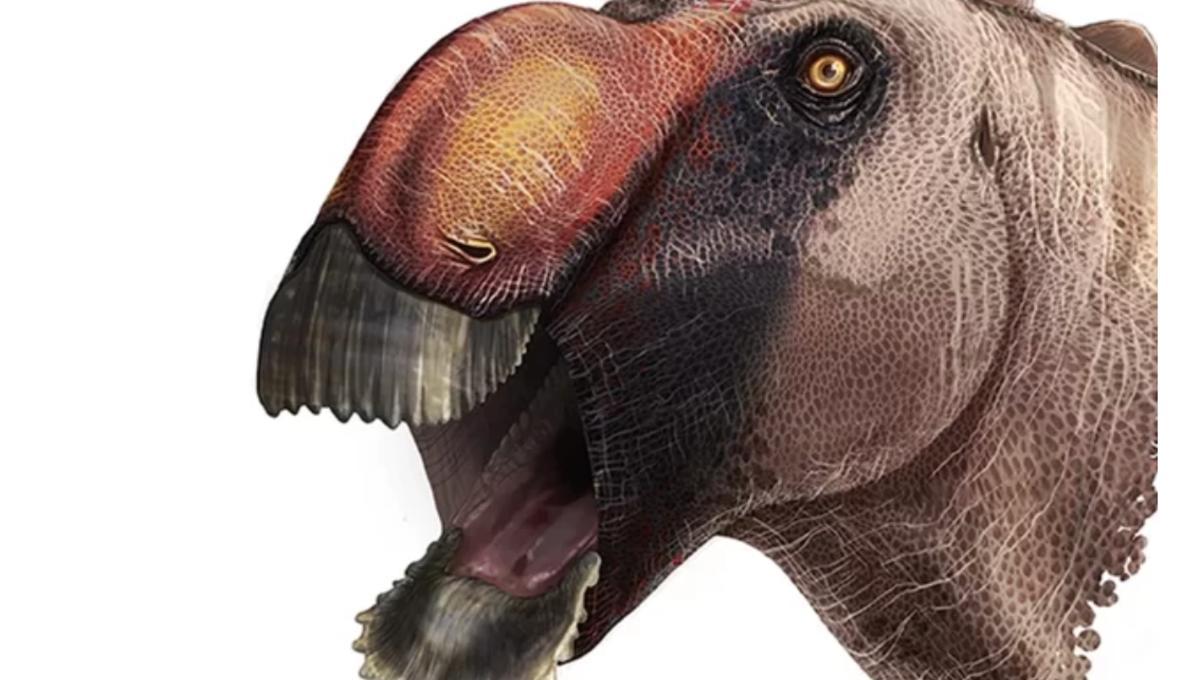 Odd new duck-billed dinosaur might have the weirdest name yet