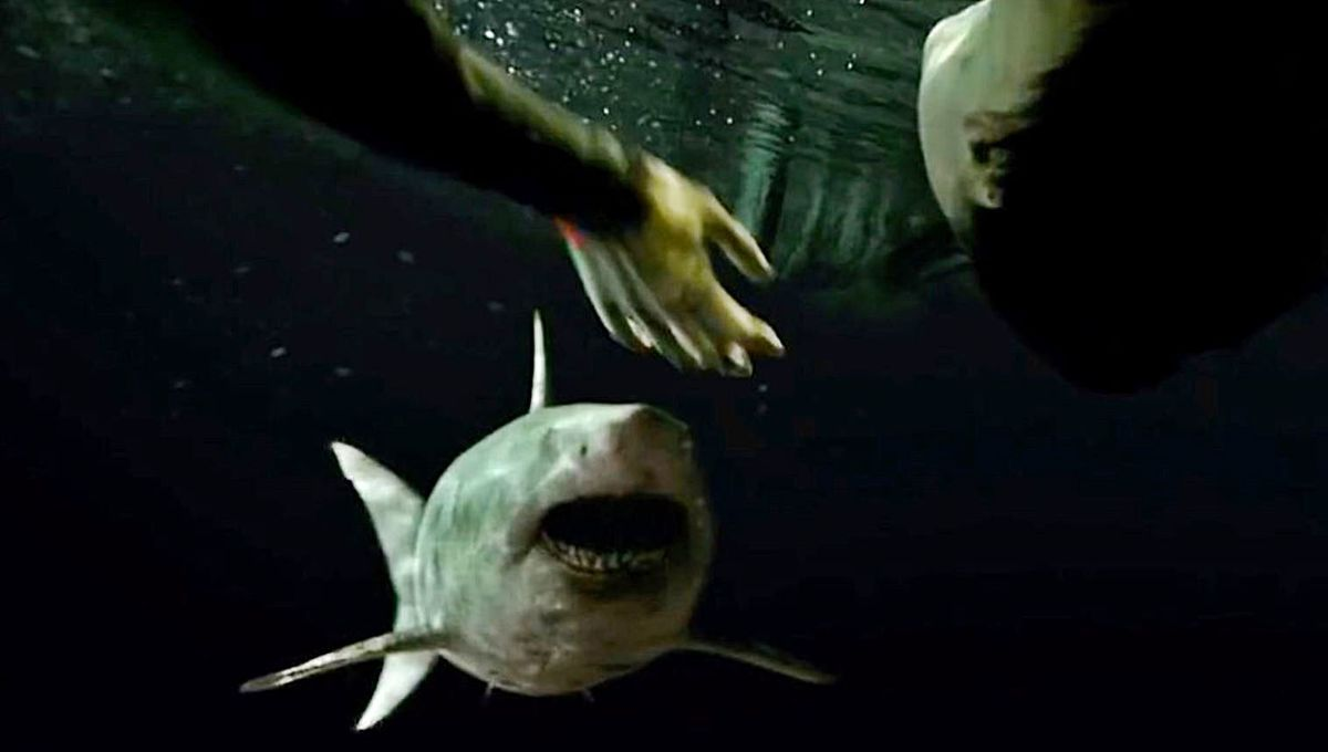 47 Meters Down: Uncaged is a cave diving horror movie that used a lot of real underwater footage