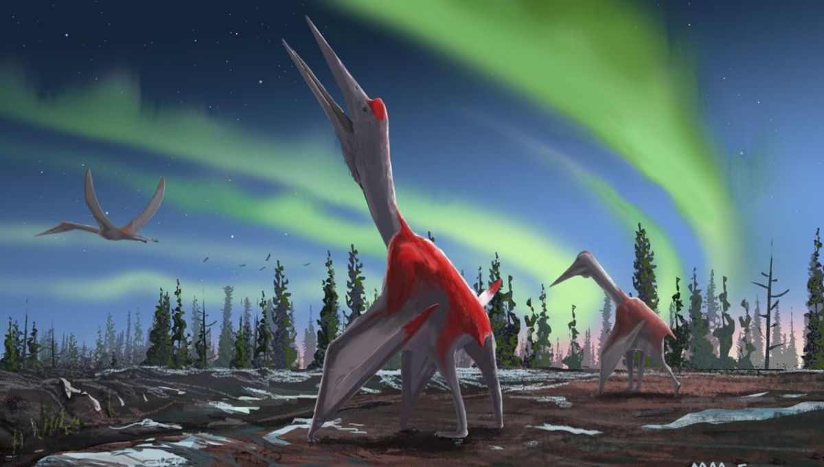 Newly discovered giant pterosaur is one of the biggest flying reptiles ever found