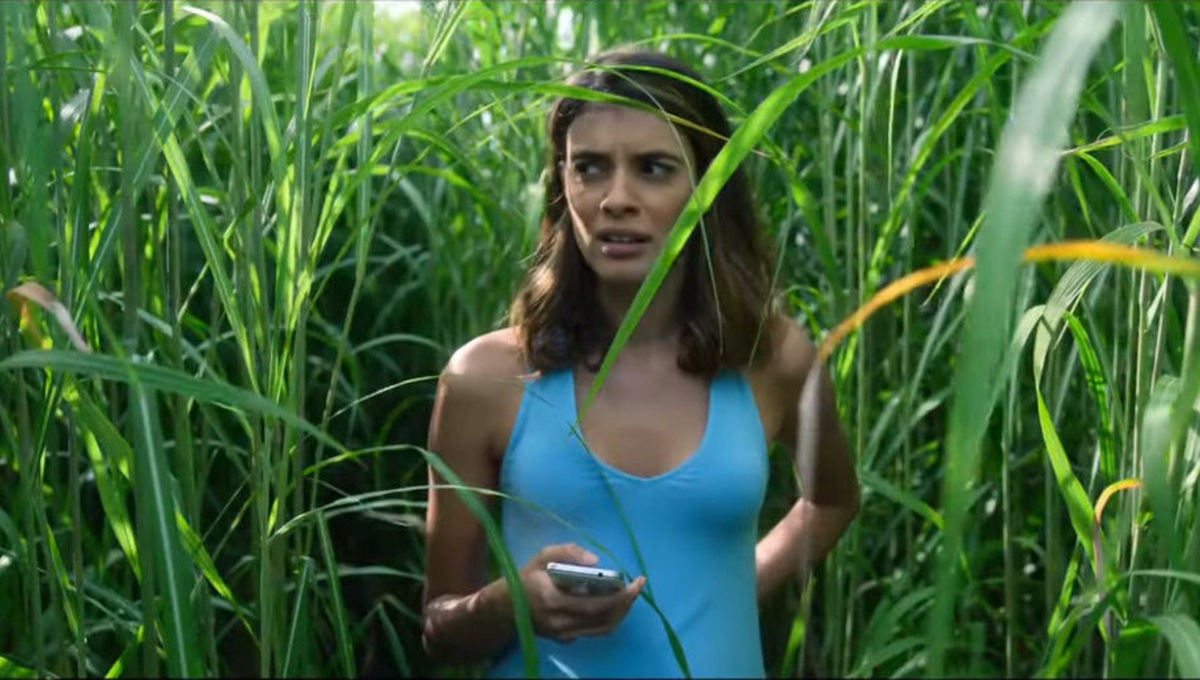 First trailer for Stephen King and Joe Hill's 'In the Tall Grass' brings terror to Netflix