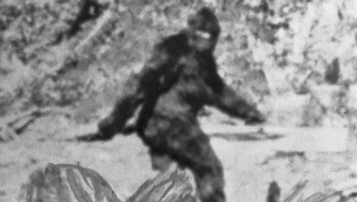 Is this viral video evidence that Bigfoot really is out there?
