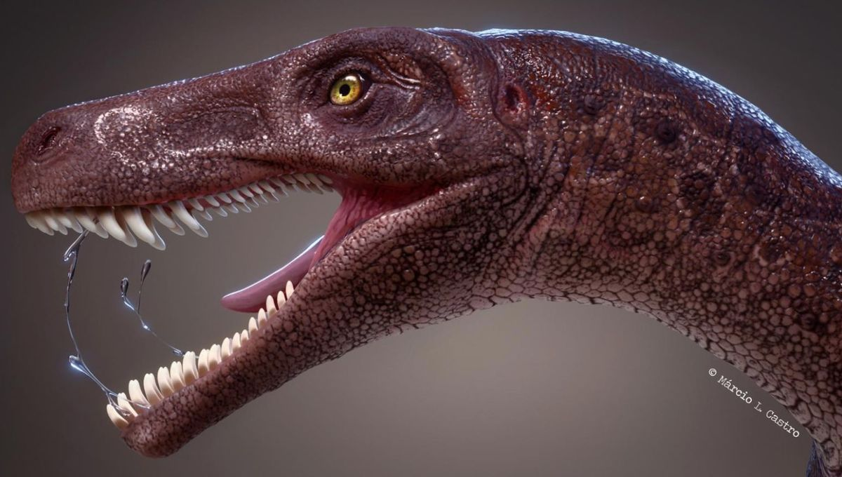 This Brazilian brute is one of the oldest carnivorous dinosaurs ever found