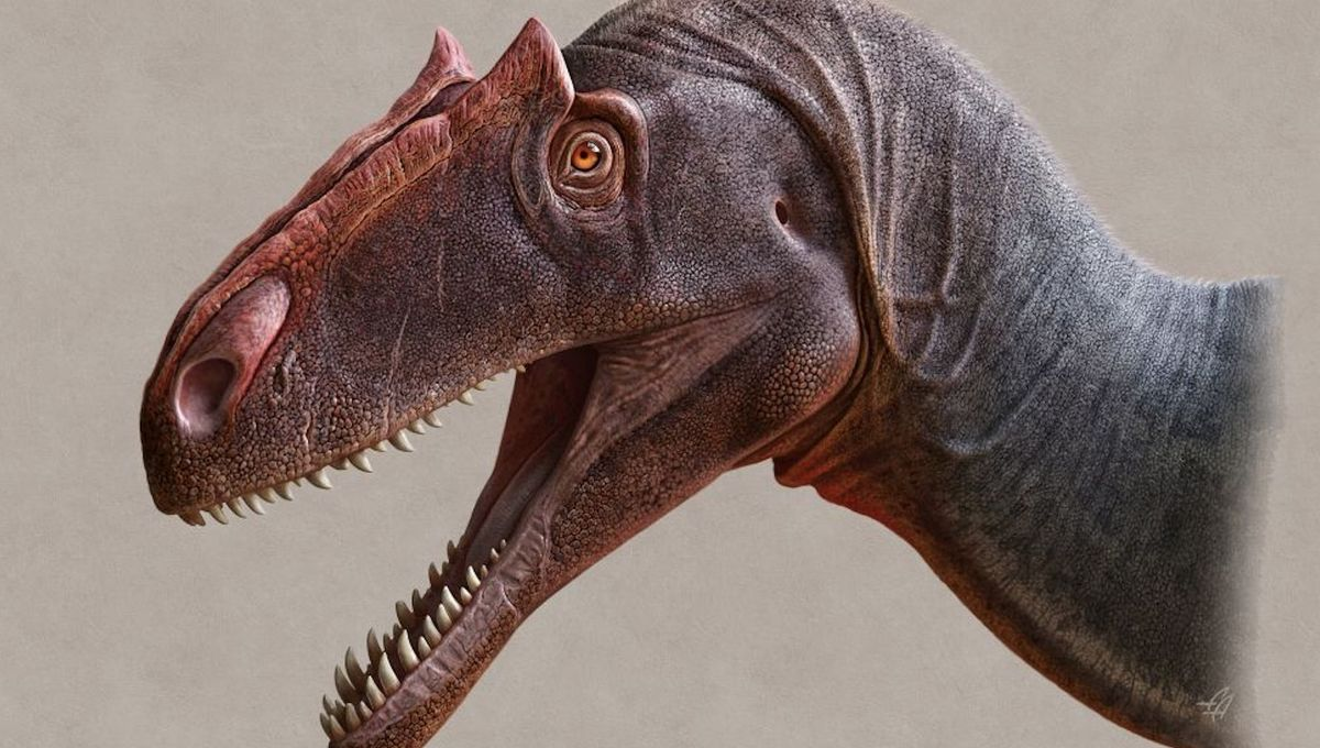 Utah paleontologists unveil new species of fearsome apex predator, Allosaurus