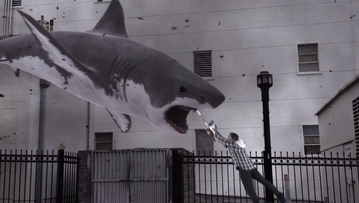 Walking sharks are creeping around, and it's weirder than a Sharknado plot twist