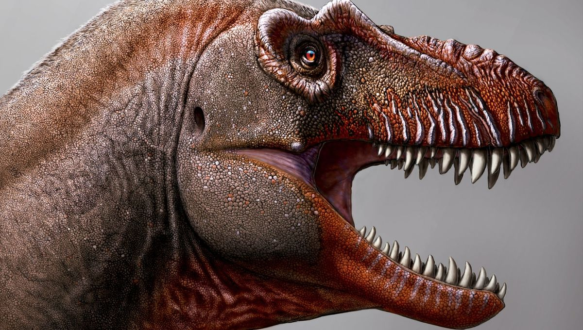 The 'Reaper of Death': Meet the ravenous new species of Tyrannosaur